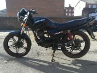 Sinnis Max 2, great runner and great all round condition.
