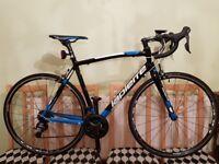 2016 Lapierre Audacio 300 TP Road Bike Carbon Fork Tiagra Size L