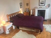 Large, sunny, double bedroom in two-bed townhouse, N1 Islington, 6 week let