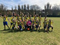 LADIES FOOTBALL TEAM - New Coach Required
