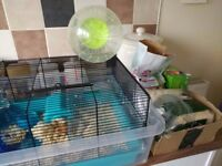 Hamster + Cage and accessories