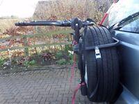 Rear wheel mounted bike carrier
