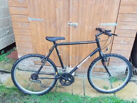 Townsend Gents Mountain Bicycle