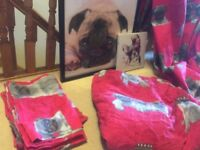 Pug bedding, curtains and pictures