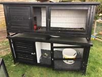 Rabbit hutches and indoor cages