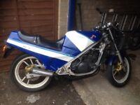 Suzuki rg250 Classic 2 stroke