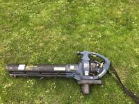 Petrol blower and vacuum
