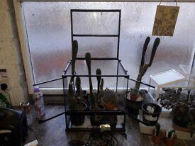 Exo terra terrarium vivarium propagator