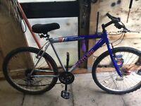 Men's Bike £35