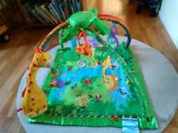 Fisher Price interactive lights and music baby gym