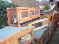 "rabbit hutch in/outside 48""wide germ free from£35.00 7days 07889465089 up from hampden park tommy"