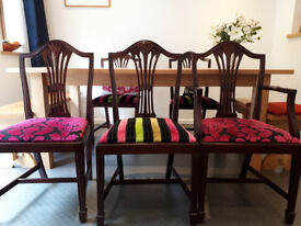 Designer Guild London Upholstered Dining Chairs. Very Good Condition. Eight chairs (2 Carvers/arms))
