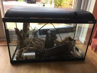 Large Fluval fish tank, filter, Ornaments & cleaner