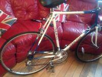 Carlton racing bike