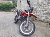 Derbi Senda 50 SM X - Race (X-Race Model) | 50cc Supermoto