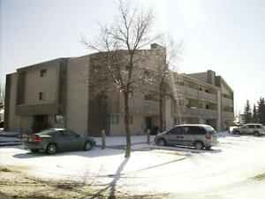 Spacious 3 Bedroom Condo in Lakeview!