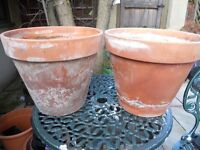 Two lovely large terracotta plant pots