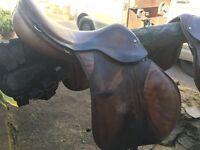 17inch saddle.