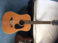 Reduced price Hokada 3142 12-string guitar