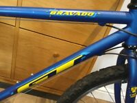 GT Retro Mountain Bike