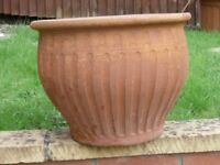 Tercotta plant Pot