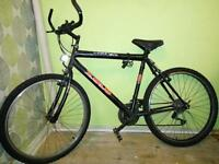 Zulu Lion Mountain Bike (Adult)