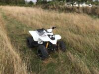 White 2016 quadzilla r100