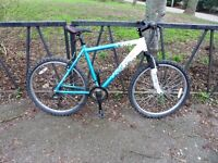 """21 Speed Lightweight Hard Tail Mountain Bike. Fully Serviced & Ready To Ride. Guaranteed. 20"""" Frame"""