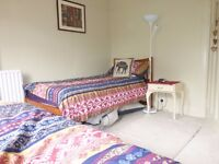 International Students - Stunning Twin room for 2 females in Brighton/ Hove B&B £100 pw