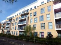 Spacious 2 bed flat old town for 2/3 bed house in or near Stevenage