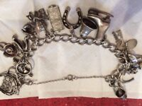 Silver charm bracelet with 17 charms attached.