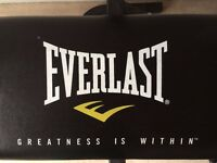 Everlast Weights Bench Up to 200kg Hardly Used in ** Excellent Condition **