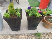 Large garden patio planter free delivery locally