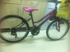"Brand new Girls Amethyst 24"" Bike"