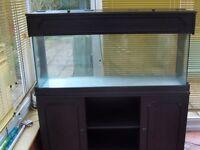 4 foot fish aquarium in black ash