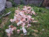 Old Victorian bricks and half bricks - free uplift