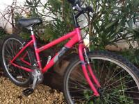 Raleigh vixen girls ladies/girls bike 40cm 16inch frame very good condition everything works well