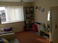 Huge double room with sunny view