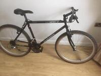 Adults mountain bike in excellent condition