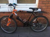 Bike 21 inch frame