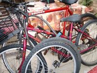 REDUCED REDUCED 2 BIKES ONE LADIES RALEIGH I MENS EMMANTELLE MUST GO FROM GARAGE