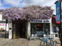 Marine Ices Gelato Bar looking for barista / waitress / cafe / bar staff