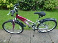 Ammaco Mountaineer Bike