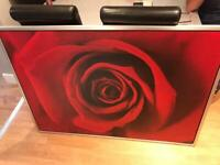 LARGE Red Rose Picture with silver frame 55 inch wide by 40