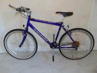 Raleigh Max Mountain Bike (suit 6ft person)