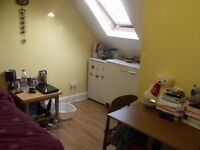 Beautiful double Loft room for single professional in isleworth