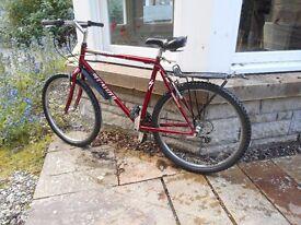 Mens Adult Mountain Bike