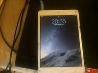 iPad mini *able to deliver*