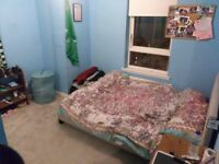double room in spacious flat