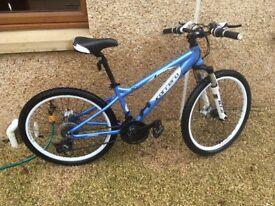 "20"" mountain bike"